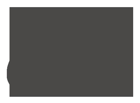 dgzmk_logo_grey
